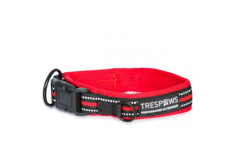 Trespass Scooby Dog Collar (Postbox Red) (S)