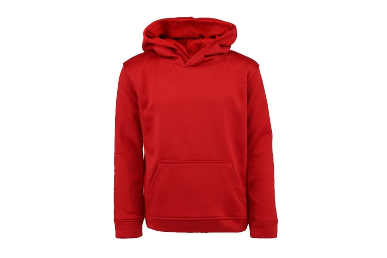 Champion Boys' Solid Performance Pullover Hoodie (Red, Size L)