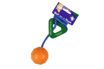 Good Boy Ball On A Rope Dog Toy (Multi-Colour) (One Size)