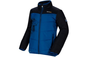 Regatta Thunderbirds Childrens/Kids Official Recharge Padded Waterproof Jacket (Oxford Blue/Navy) (11-12 Years)