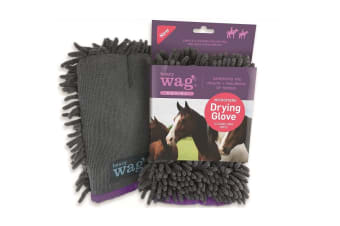 Henry Wag Equine Microfibre Cleaning Glove (Grey) (One Size)