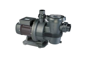 Davey Typhoon C150M 1.5HP Pool Pump
