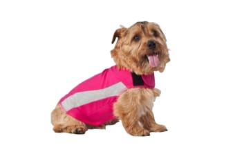 ThunderShirt Polo For Dogs (Pink)