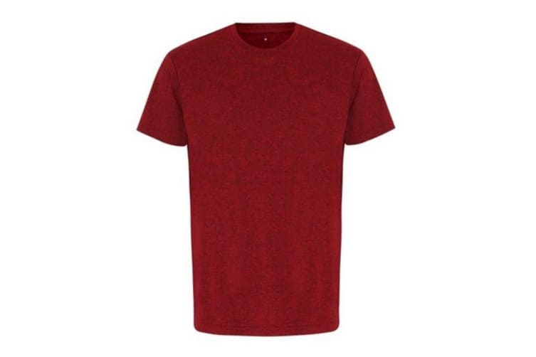 Tri Dri Mens Short Sleeve Lightweight Fitness T-Shirt (Red/ Black Melange) (3XL)