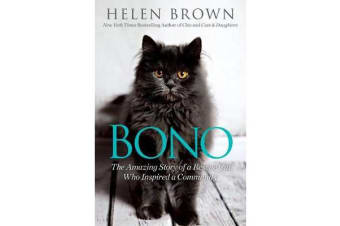 Bono - The Amazing Story of a Rescue Cat Who Inspired a Community