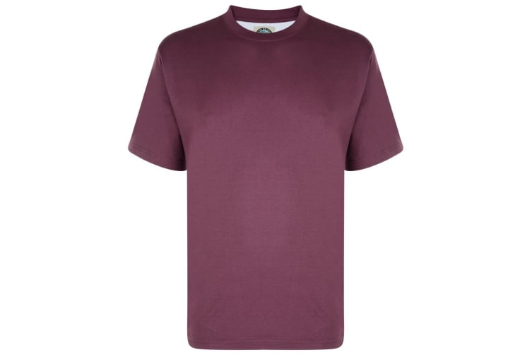 Kam Jeanswear Mens Plain T-Shirt (Plum) (6XL)