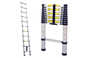 TRA 3.2m Portable telescopic ladder with carry bag