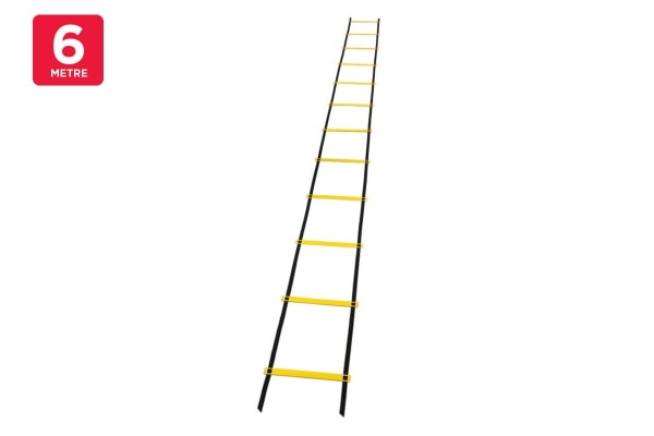 Fortis Agility Ladder