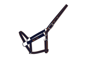 Mark Todd Headcollar (Navy/Orange) (Pony)