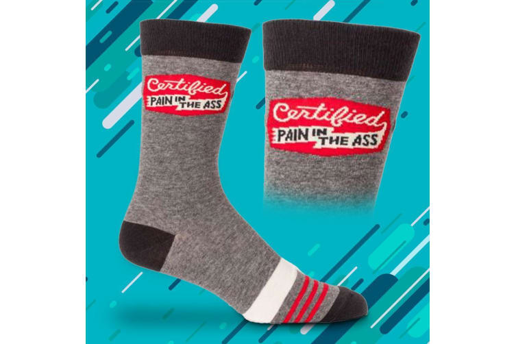 Certified Pain In The Ass Mens Combed Cotton Novelty Socks   BlueQ