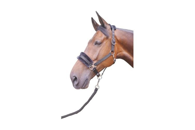 Hy Faux Fur Padded Head Collar with Lead Rope (Black) (Cob)