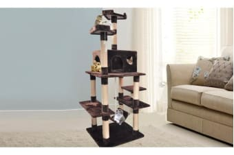 Cat Scratching Post Tree 1.83m Brown