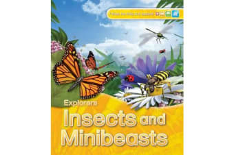 Explorers - Insects and Minibeasts