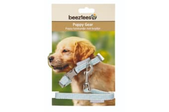 Beeztees Puppy Collar And Lead Set (Blue)