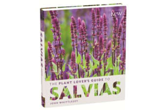 Plant Lover's Guide to Salvias