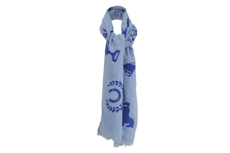 HyFASHION Womens/Ladies Balmoral Scarf (Light Blue/Royal Blue) (One Size)