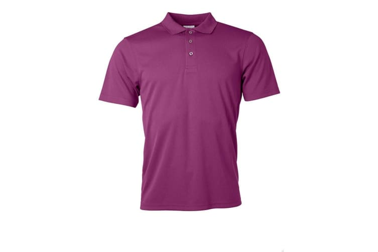 James and Nicholson Mens Active Polo (Purple) (3XL)