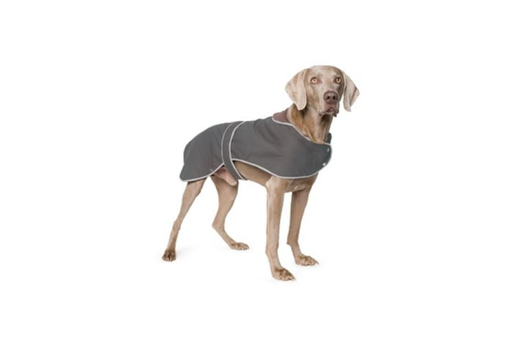 Ancol Timberwolf Extreme Waxed Dog Coat (Brown) (XXL)