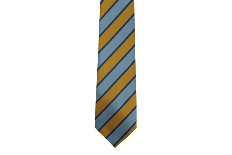 Premier Tie - Mens Wide Stripes Work Tie (Sky/Gold) (One Size)