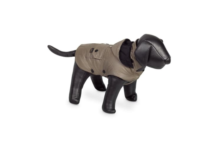 Nobby Mellow Hooded Dog Coat (Taupe) (26cm)