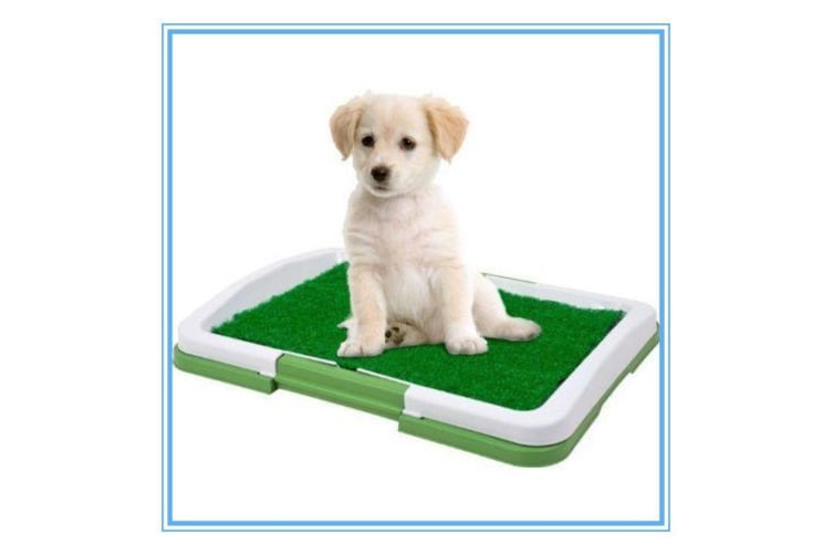 Indoor Toilet Training Pet Potty Grass Puppy Dog Trainer Mat Patch Paw n Claws w