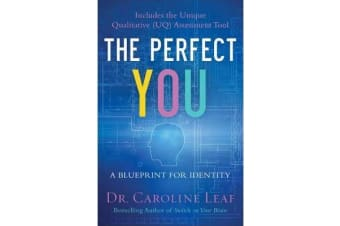The Perfect You - A Blueprint for Identity