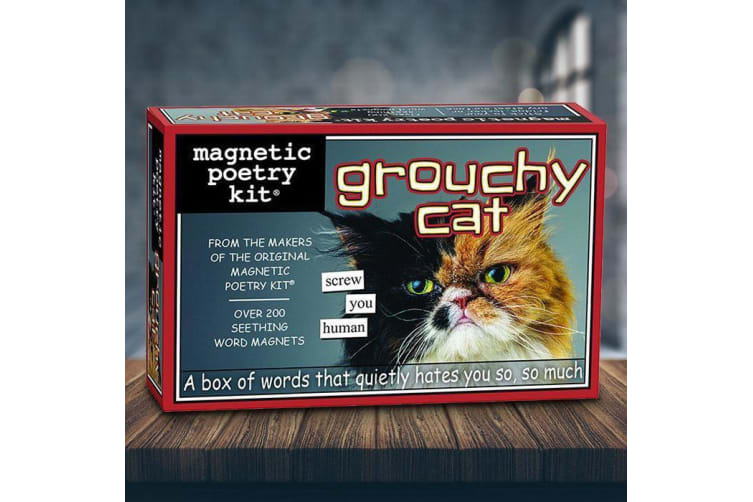 Grouchy Cat Fridge Magnet Poetry Kit
