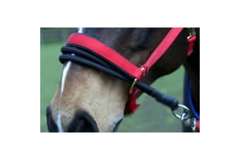 Sundry Ezyloader Horse Head Collar Adapter (Black) (One Size)