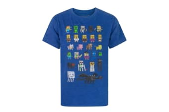 Minecraft Official Boys Sprites Characters T-Shirt (Blue)
