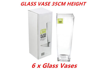 6 x Glass V-Shaped Design Vase Classic Container Flowers Plants Home Decoration