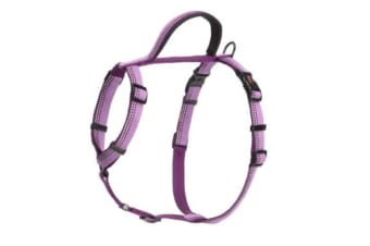 The Company Of Animals HALTI Walking Harness (Purple)
