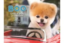 Boo - Little Dog in the Big City