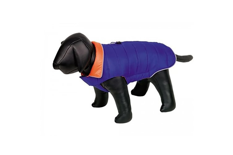 Nobby Mats Dog Coat (Blue) (29cm)