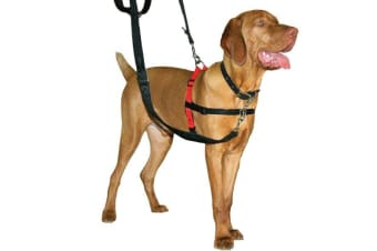 The Company Of Animals HALTI Harness (Black)