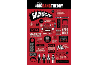 The Big Bang Theory Infographic Poster (Red) (One Size)