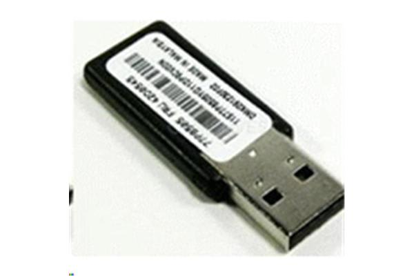 Lenovo 00ML200 IBM 32GB Enterprise Value USB Memory Key