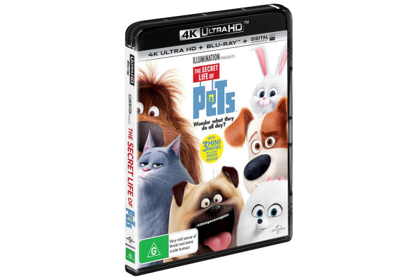 The Secret Life of Pets 4K Ultra HD UHD
