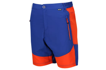 Regatta Mens Sungari Shorts (Surfspray Blue/Blaze Orange) (32in)