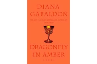 Dragon Fly In Amber