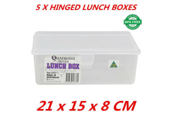 5 x Hinged Lunch Box Flip Top Plastic Food Storage Container Quadrant BPA Free