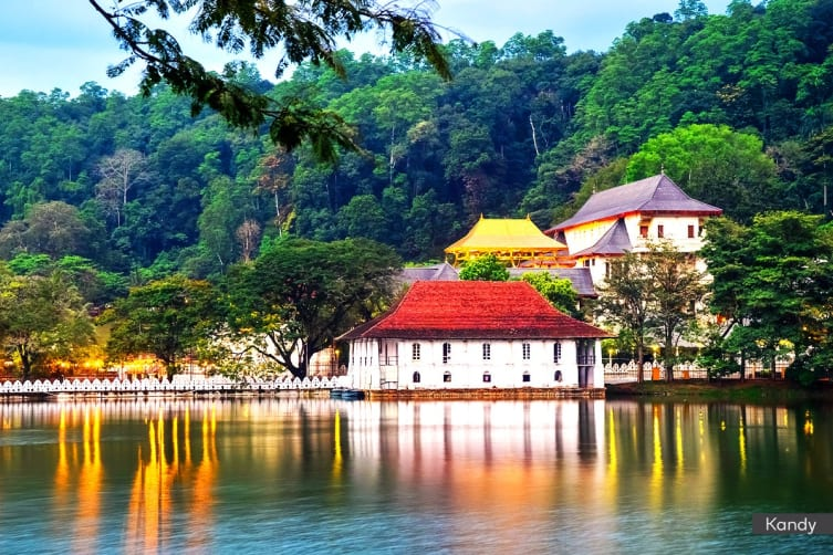 SRI LANKA: 7 Day Private Hill Country Tour for Six