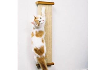 SmartCat Combination Scratcher