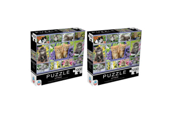 2x 1000pc Arrow Puzzles Kittens 60.9cm Jigsaw Puzzle Toy/Game f/ Teen/Adult 15y+