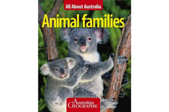 Animal Families All About Australia