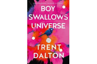 Boy Swallows Universe