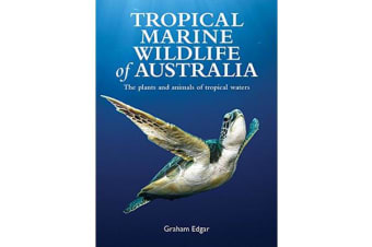 Tropical Marine Wildlife of Australia