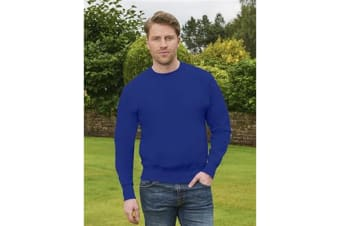 Casual Original Mens Sweatshirt (Royal)