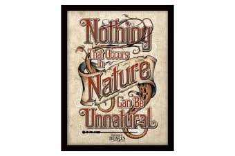 Fantastic Beasts And Where To Find Them Nature 16 x 12 Framed Picture (Multi-colour)