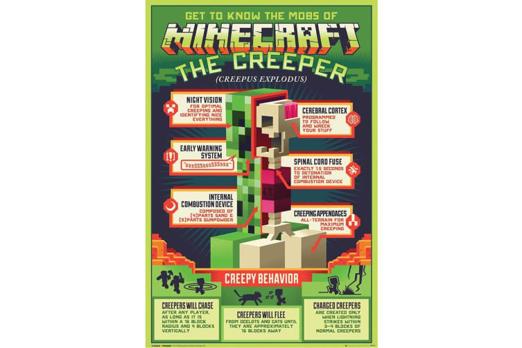 Minecraft Creeper Poster (Green) (One Size)