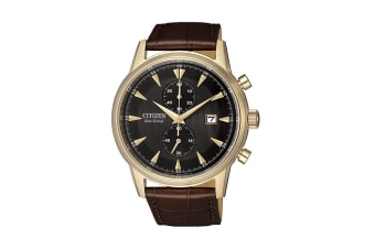 Citizen Men's Analog Eco-Drive Watch with Oxhide Leather Strap - Stainless Steel Gold/Brown (CA7008-11E)